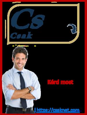 Csaknet - Online Menedzser